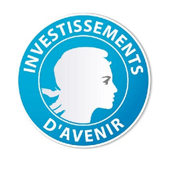 investissements d'avenir small